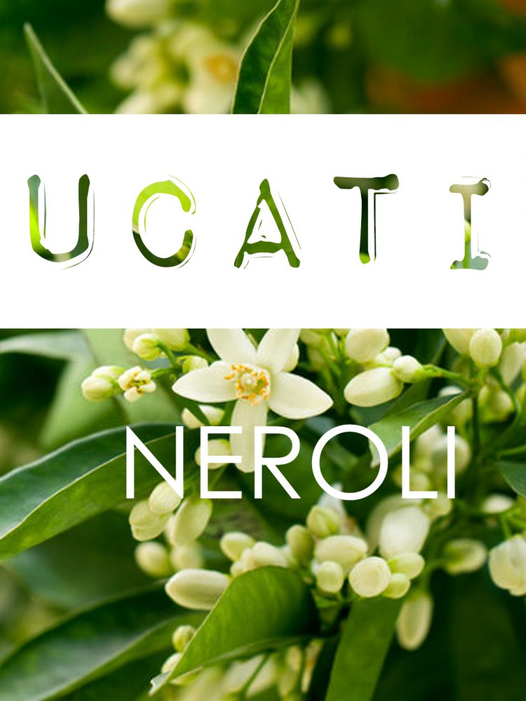 Ingredient Knowledge Neroli parfum