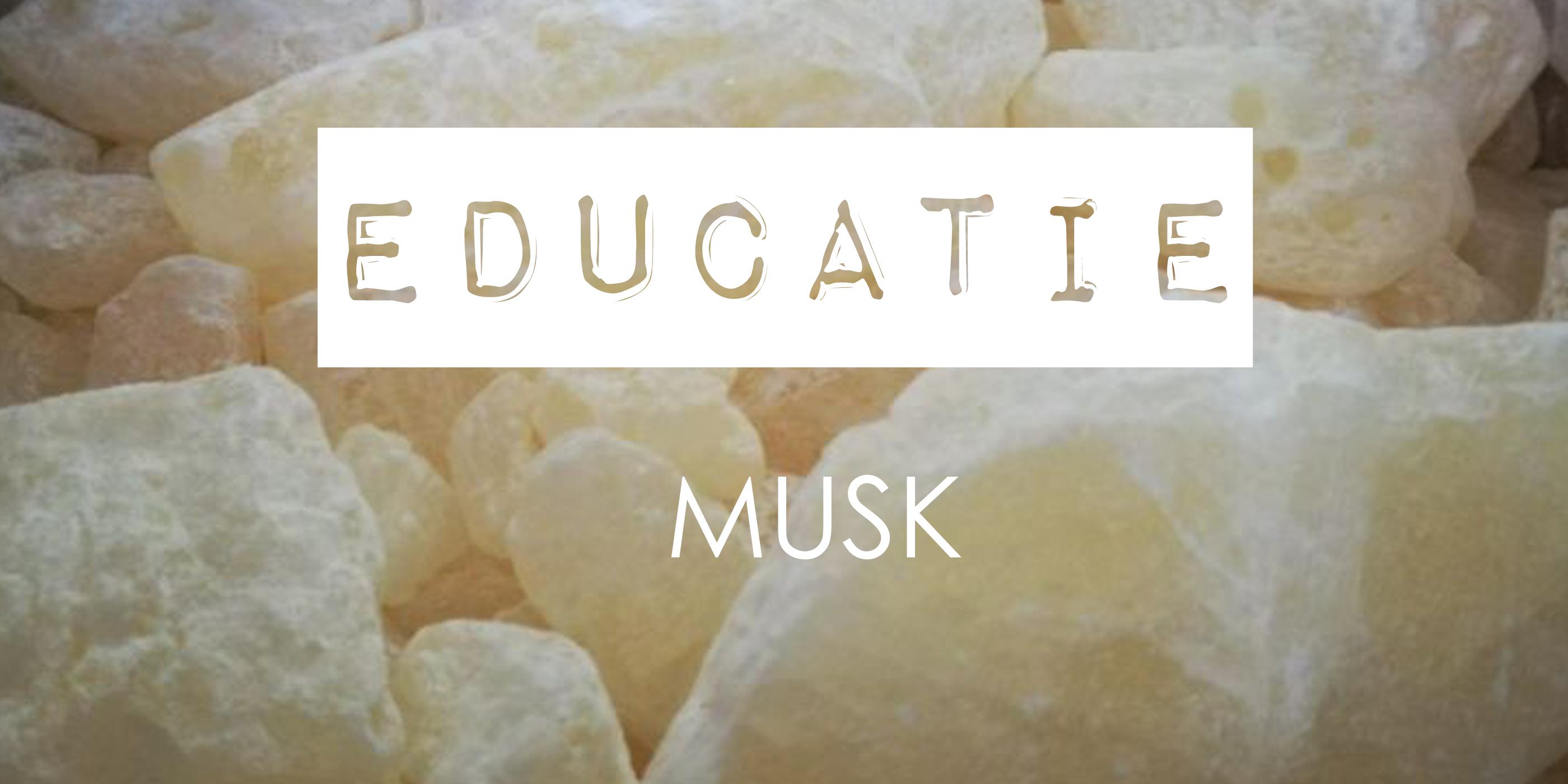 parfum ingrédient Musk White