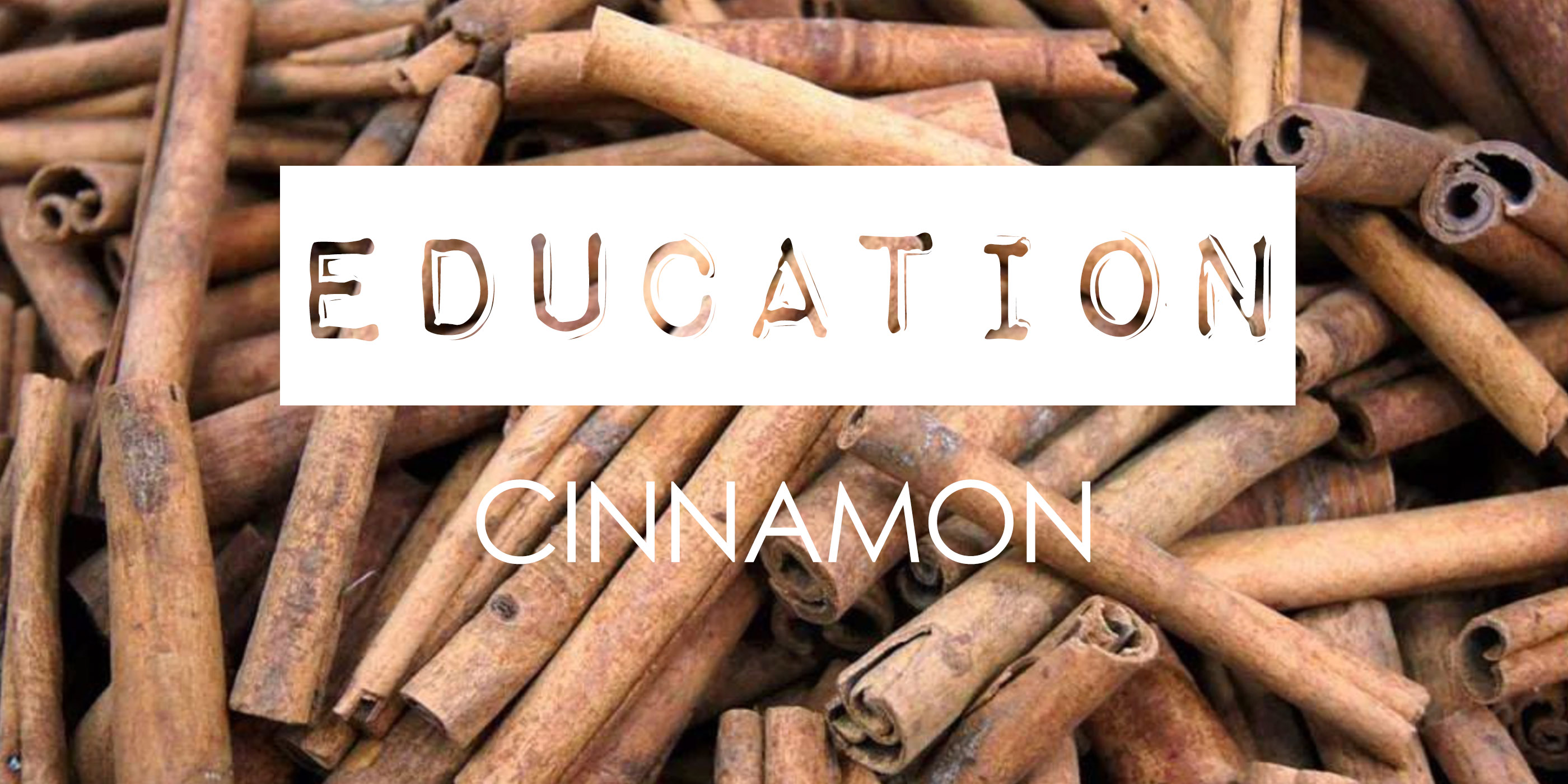 Education_Cinnamon parfum ingredients