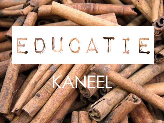 Educatie_Kaneel parfum ingrediënten
